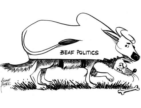 beef-politics (1)